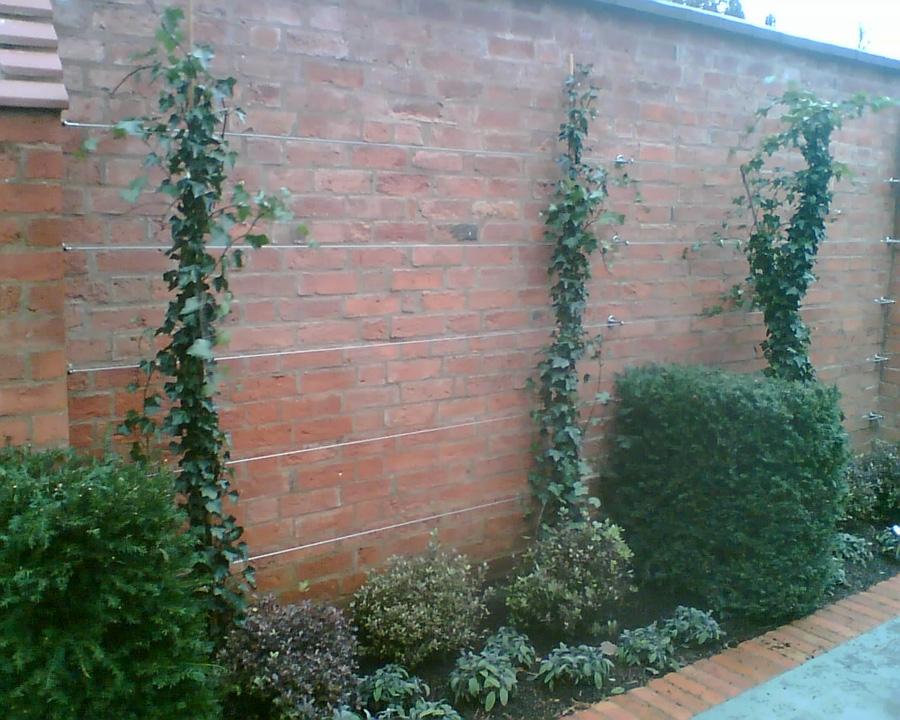 Garden-Design-stainless-steel-wire-trellis-(18) - Jakob
