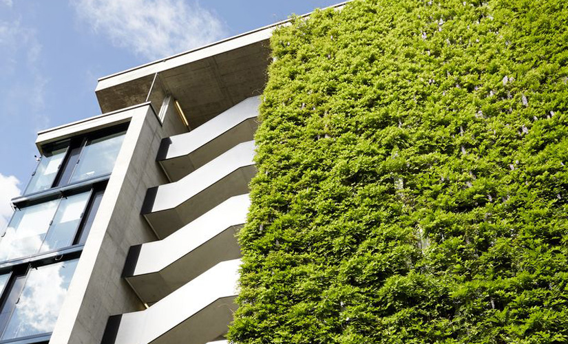 Green walls delivering aesthetic ecological and for Green wall advantages