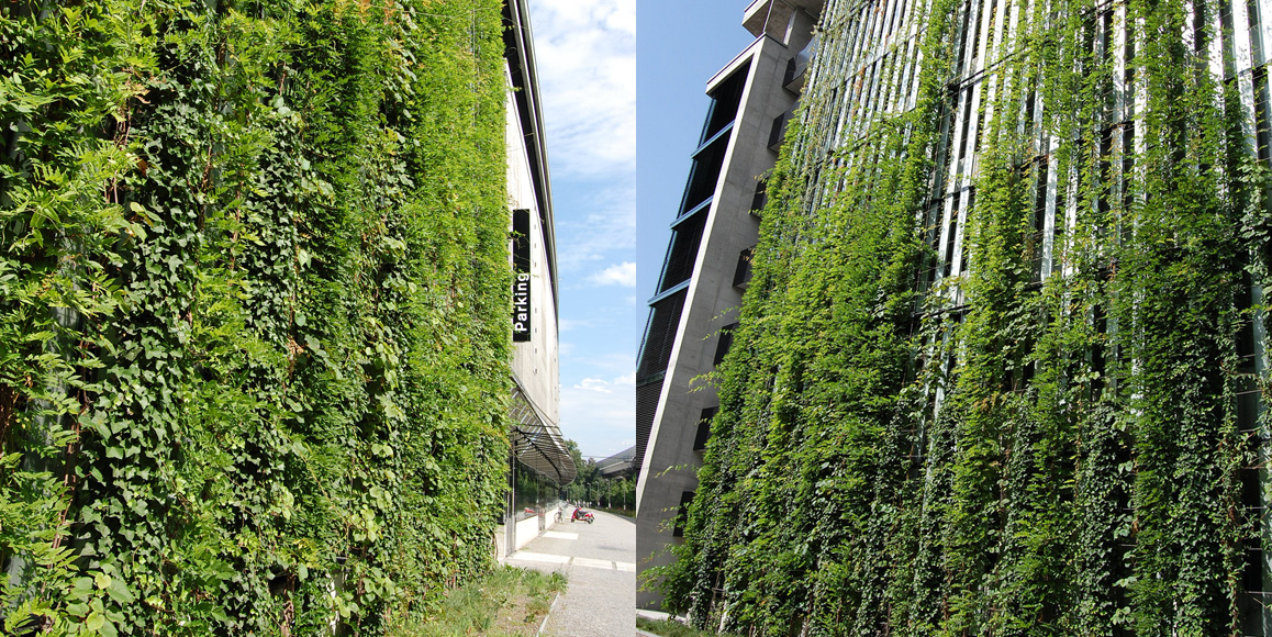 Sihl City Green Wall Jakob