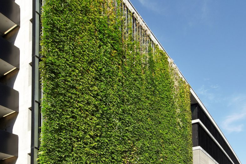 Green walls jakob green wall solution from mma - Building a living wall ...